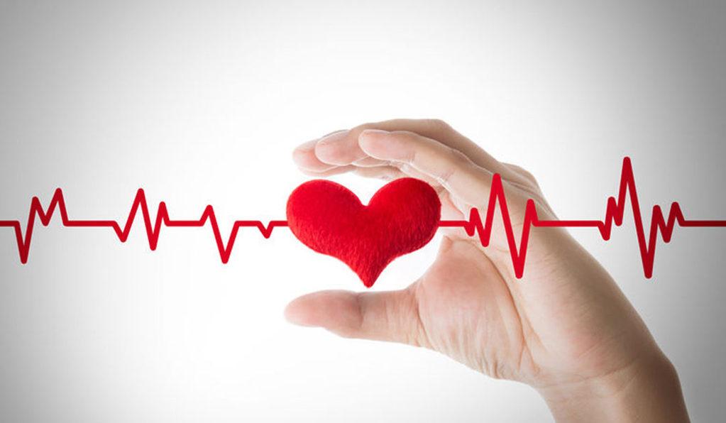 main qui tient un faux coeur